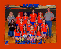 Volleyball 8x10