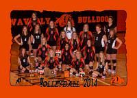 Waverly HS Volleyball